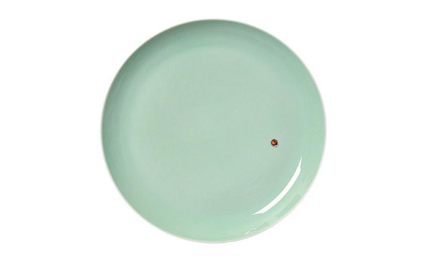Plate Sky